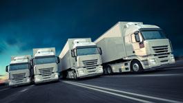 truckparts 265